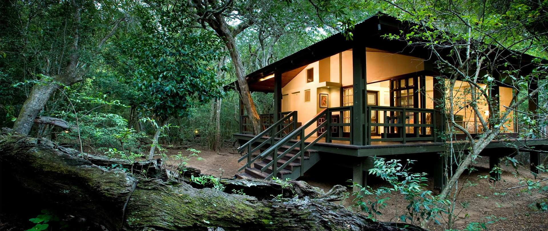Beyond Phinda Forest Lodge
